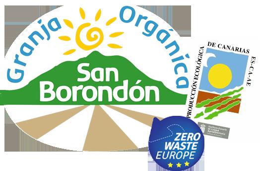 Proyecto San Borondón